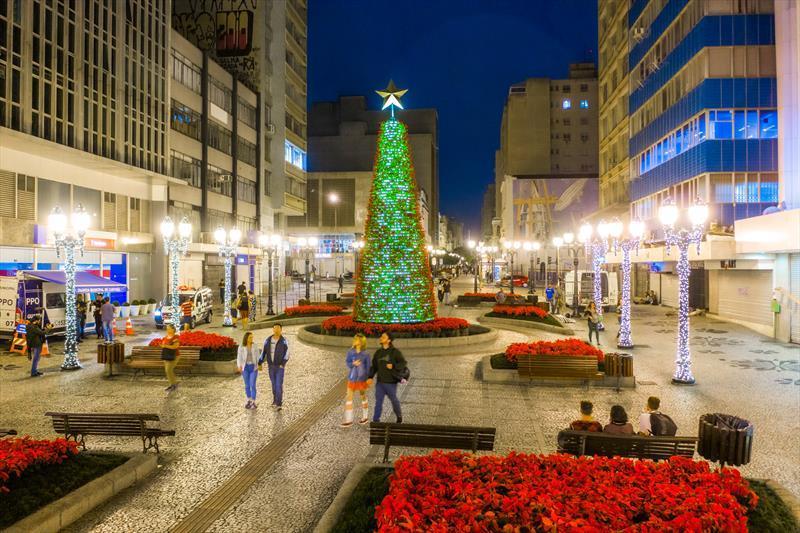 Árvore da Vida na Rua XV de Novembro. Natal de Curitiba - Luz dos Pinhais 2019. Daniel Castellano / SMCS. Todas as imagens devem ser obrigatoriamente creditadas.