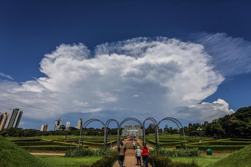 Jardim Botânico. Foto: Daniel Castellano / SMCS - Todas as imagens devem ser obrigatoriamente creditadas.
