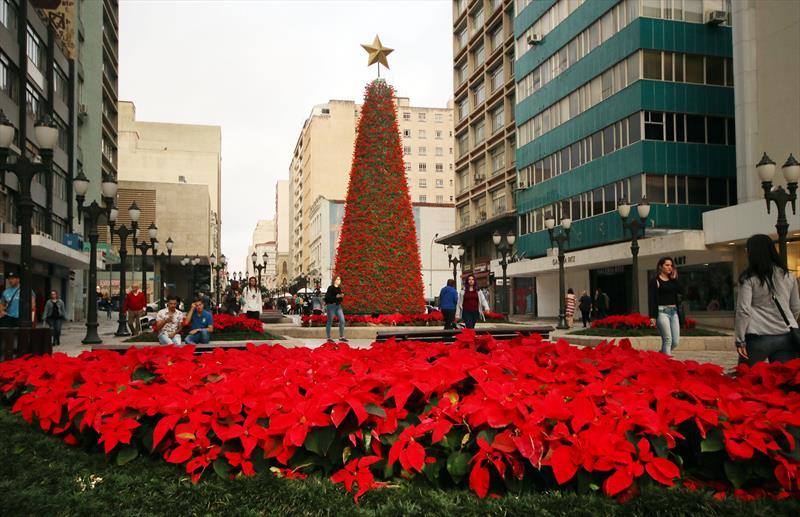 Natal de Curitiba - Luz dos Pinhais. Foto : Lucilia Guimarães/SMCS - Todas as imagens devem ser obrigatoriamente creditadas.